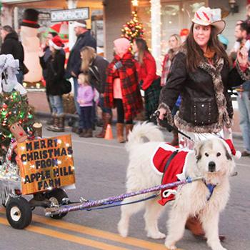 Banner Elk NC Christmas 2020