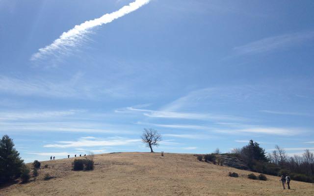 Bluff Mountain Trail Doughton Park Blue Ridge Parkway