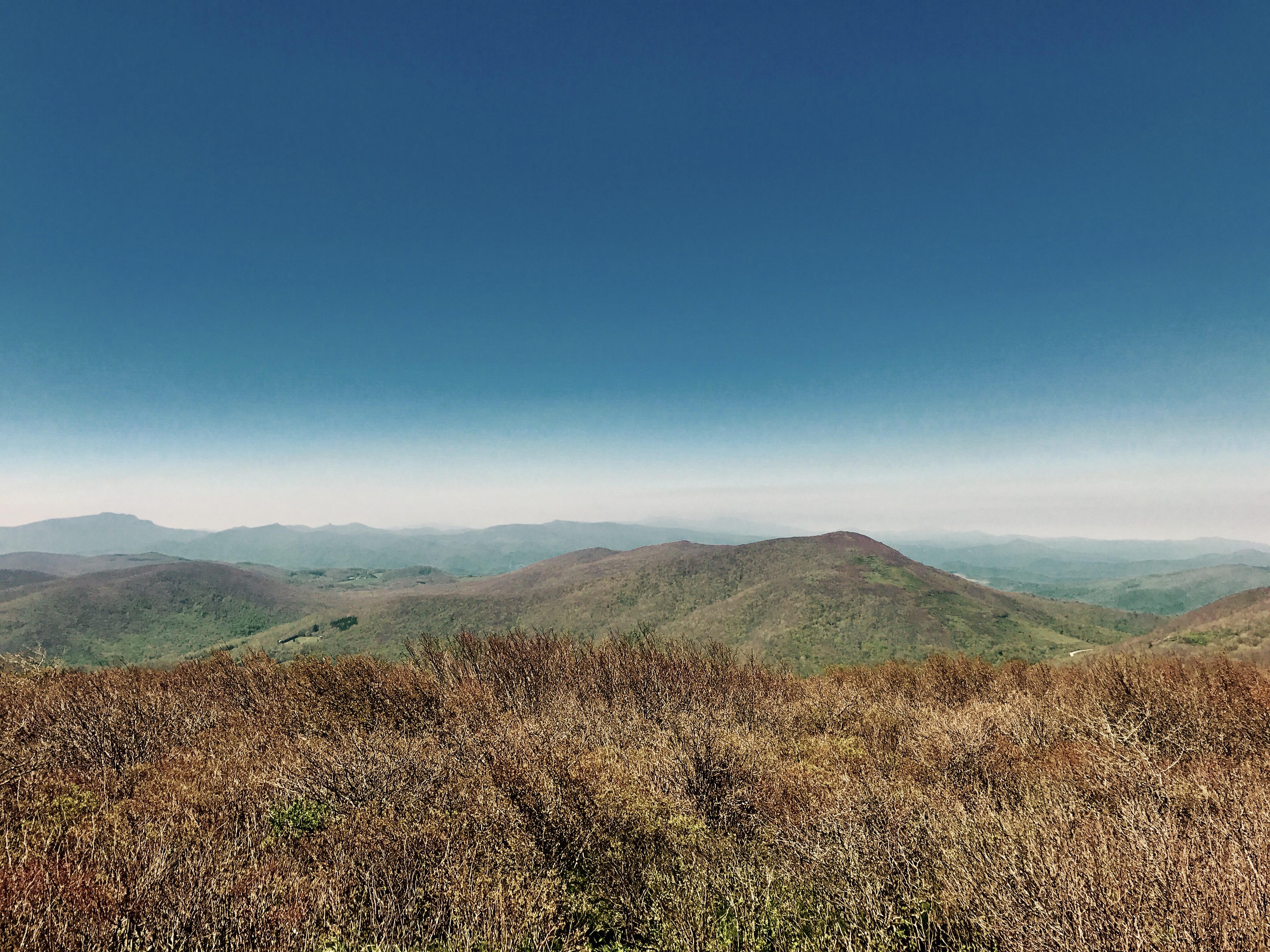 Elk Knob State Park Summit Trail