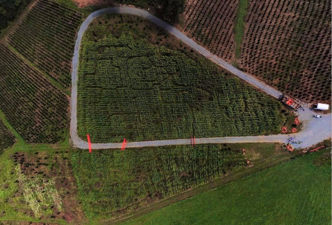 C&J Corn Maze and Pumpkin Patch
