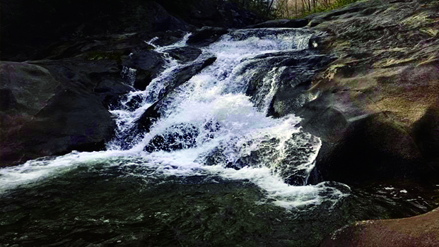 Falls on Cragg Prong Wilson Creek NC