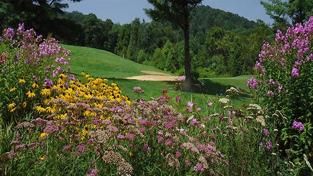 Sugar Mountain Municipal Golf Course