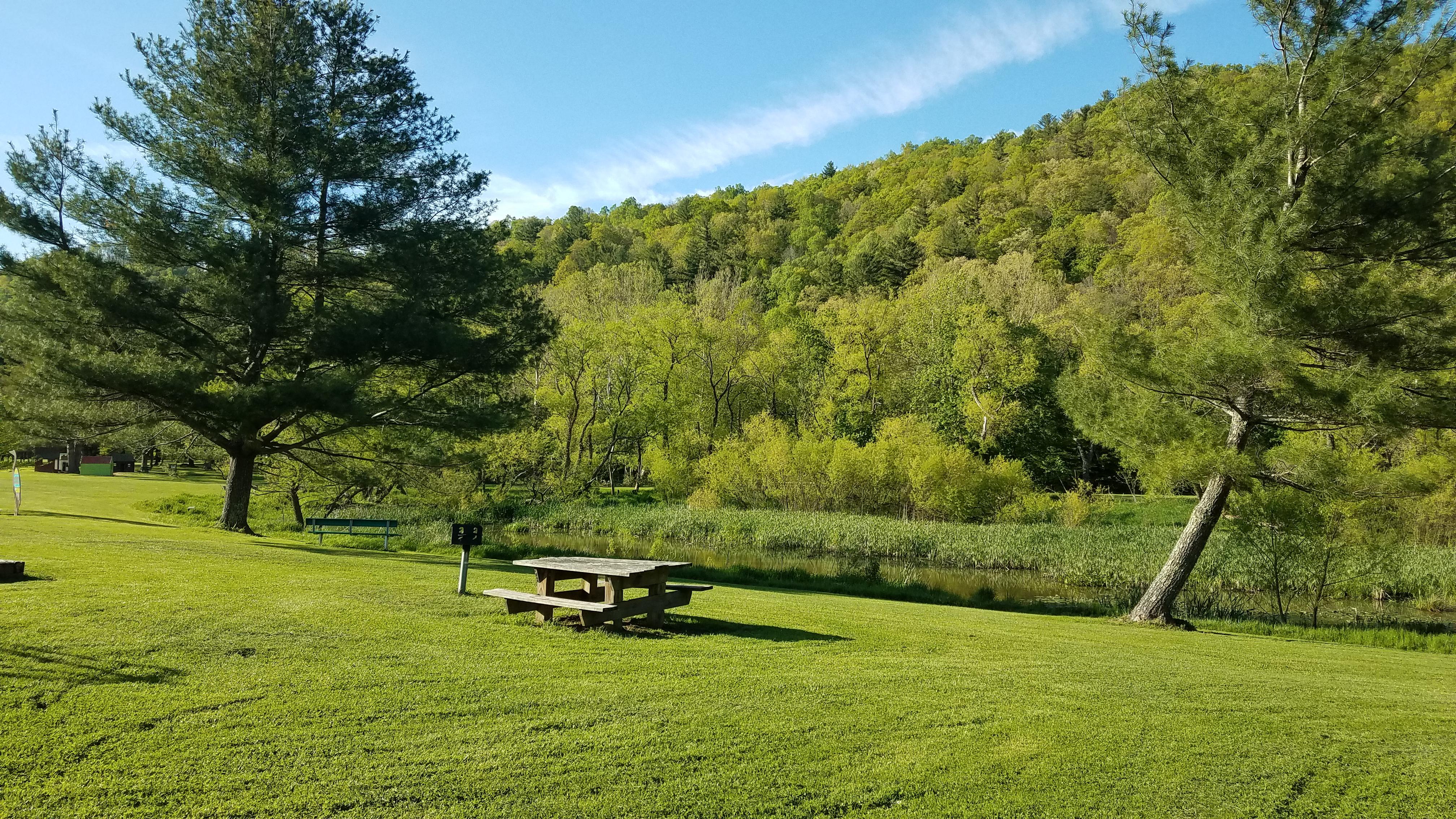 Valle Crucis Park Picnic Area