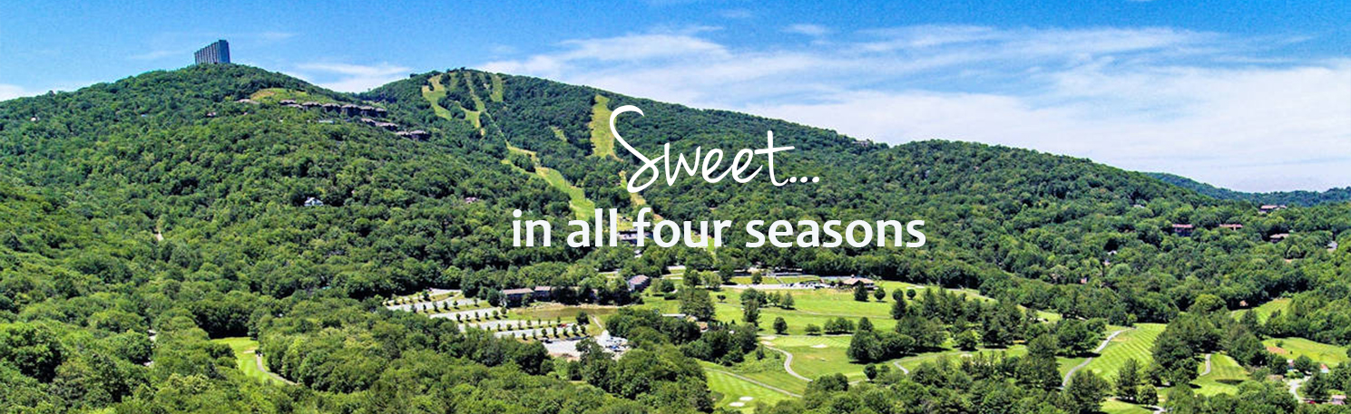 Sugar Mountain Visitor guide